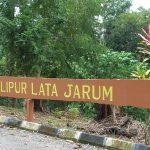 Air Terjun Lata Jarum, Raub.